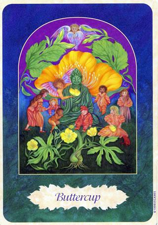 Healing Waters Offers Isha Lerners Essences